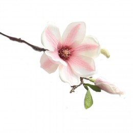 Magnólie, textilní dekorace, květina světle růžová