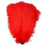 Pštrosí peří 20-25 cm, barva červená