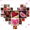 Plátky růží, textilní dekorace, barva růžová, balení 100 ks