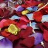 Plátky růží, textilní dekorace, barva červená, balení 1000 ks
