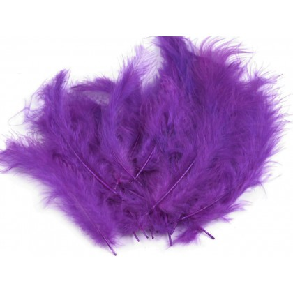 Pštrosí peří barvené, 12-17 cm, fialová